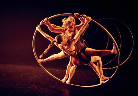 HYENA the debut show by Alula Cyr - Circus Events - CircusTalk