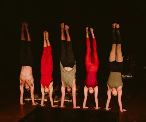 Fauna, Chapelfield Summer Circus - Circus Events - CircusTalk