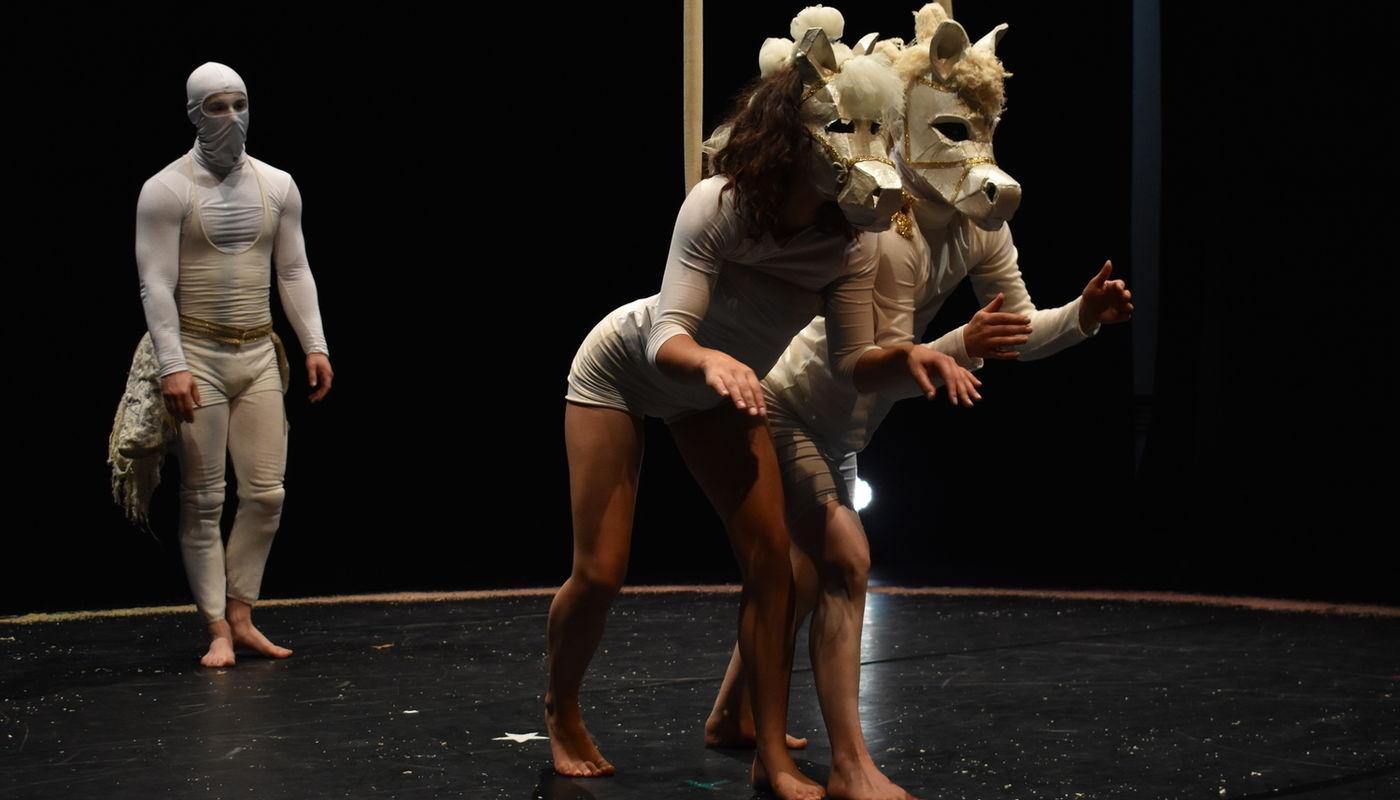 MA in Directing Circus at Circomedia - Circus Events - CircusTalk
