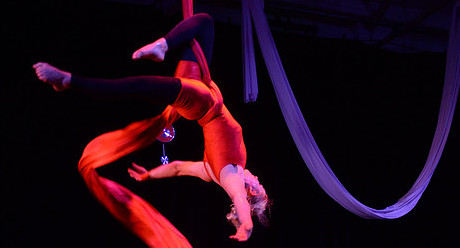 4 Week Professional Circus Course - Circus Events - CircusTalk