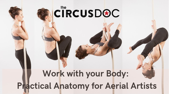Work With Your Body: Practical Anatomy for Aerial Artists - Circus Events - CircusTalk