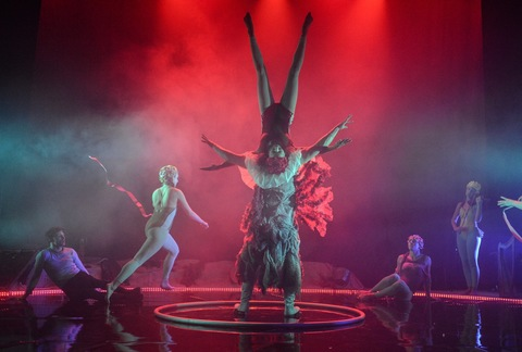 Metta's Little Mermaid, the Circus Sensation - Circus Events - CircusTalk