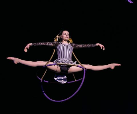 Circus Cabaret Lates, Chapelfield Summer Circus - Circus Events - CircusTalk