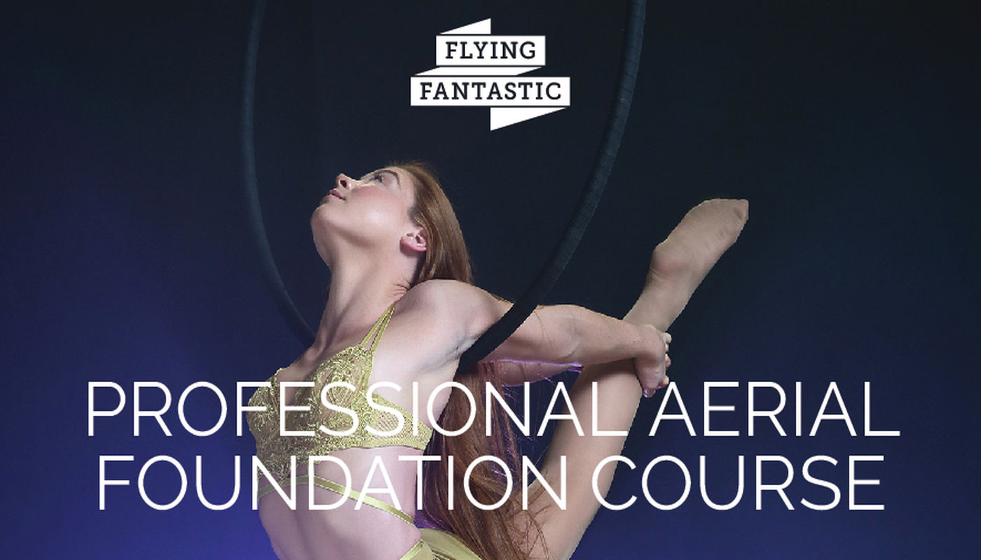Professional Aerial Foundation Course