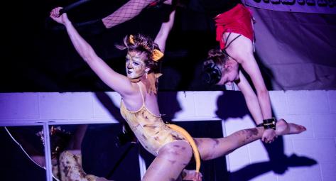 Circurious - Circus Events - CircusTalk