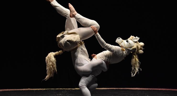 Scholarship - Masters course in Directing Circus at Circomedia - Circus Events - CircusTalk