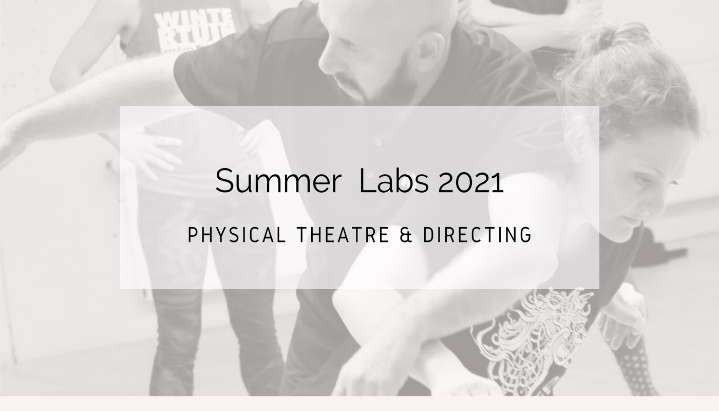Physical Theatre & Directing Labs at NIPAI