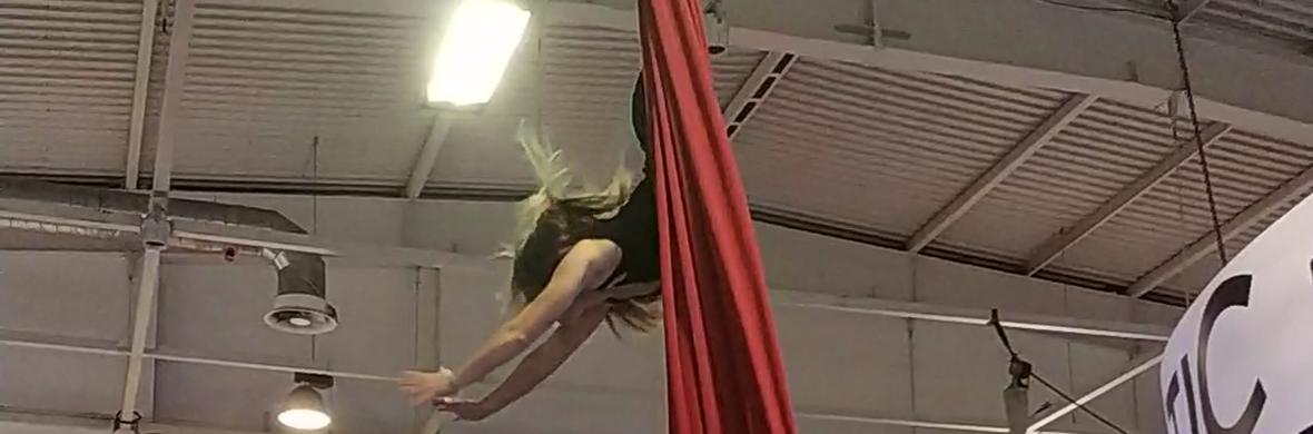 Silks - Circus Acts - CircusTalk
