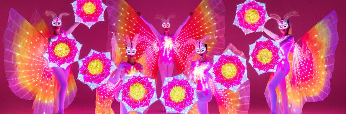 "Light & Dance show ""Butterflies of Paradise"" - Circus Acts - CircusTalk"