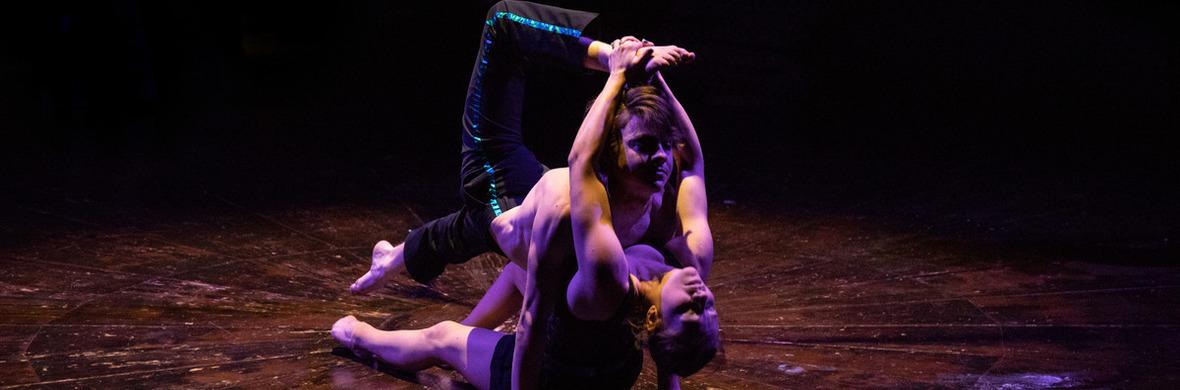 Sposa son disprezzata - Circus Acts - CircusTalk