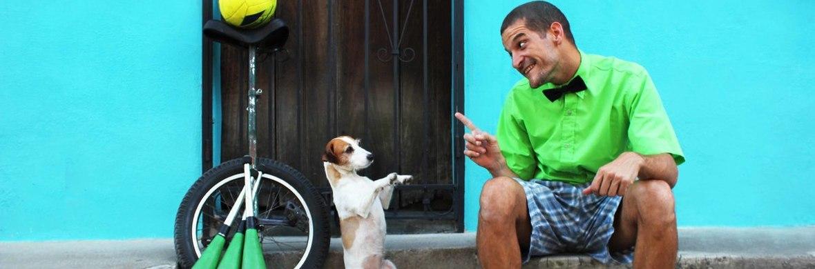 Nachos con Queso and Mancha Acrobat Dog Street - Show - Circus Shows - CircusTalk