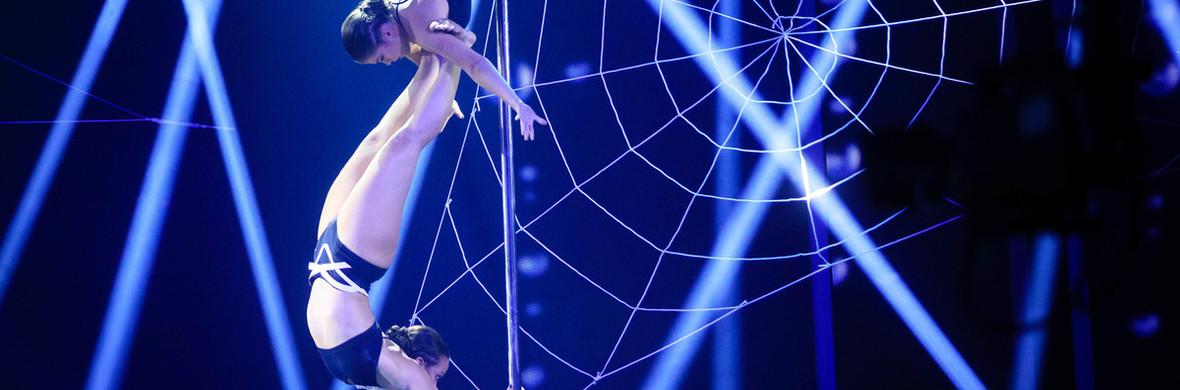 Pole dance Black Widow - Circus Acts - CircusTalk