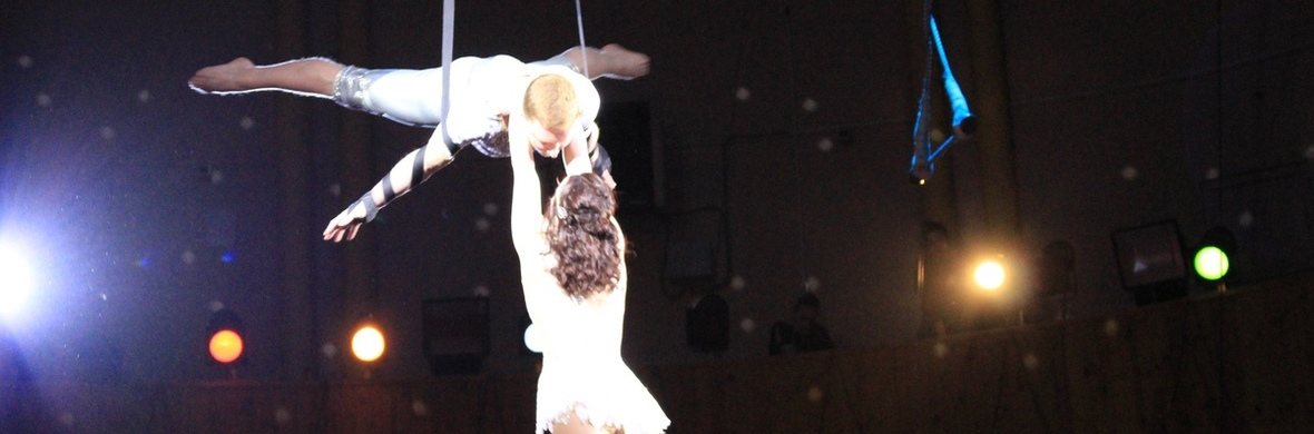 Aerialstraps duo - Circus Acts - CircusTalk
