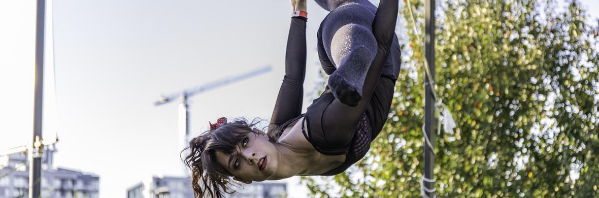 Priscilla Dance Trapeze - Circus Acts - CircusTalk