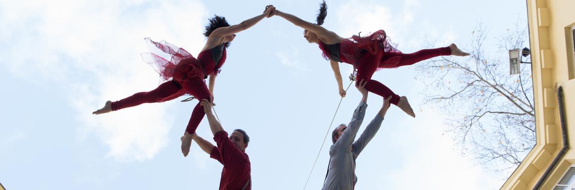 The Flock Project - Circus Shows - CircusTalk