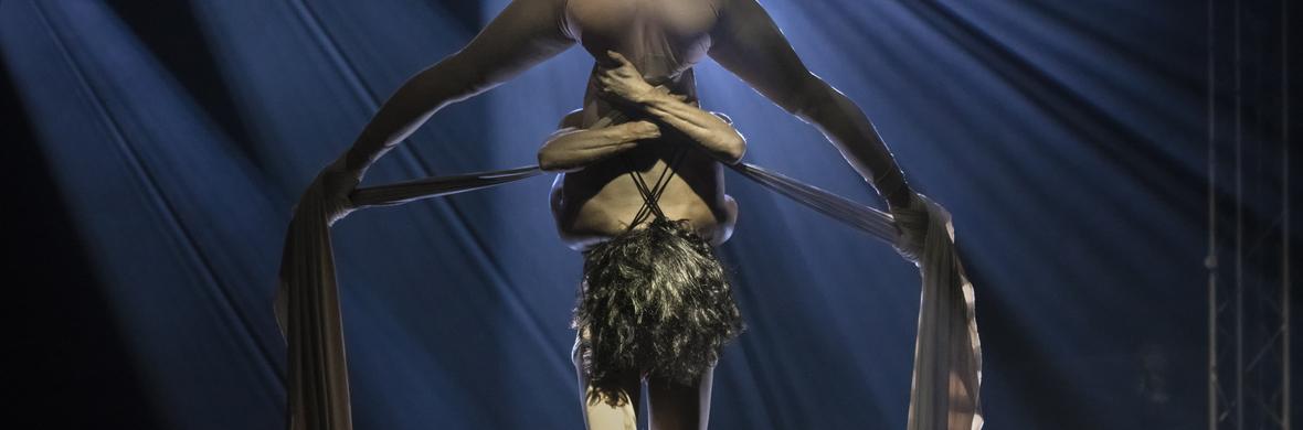 Pot le Pot - Duo Silks - Circus Acts - CircusTalk