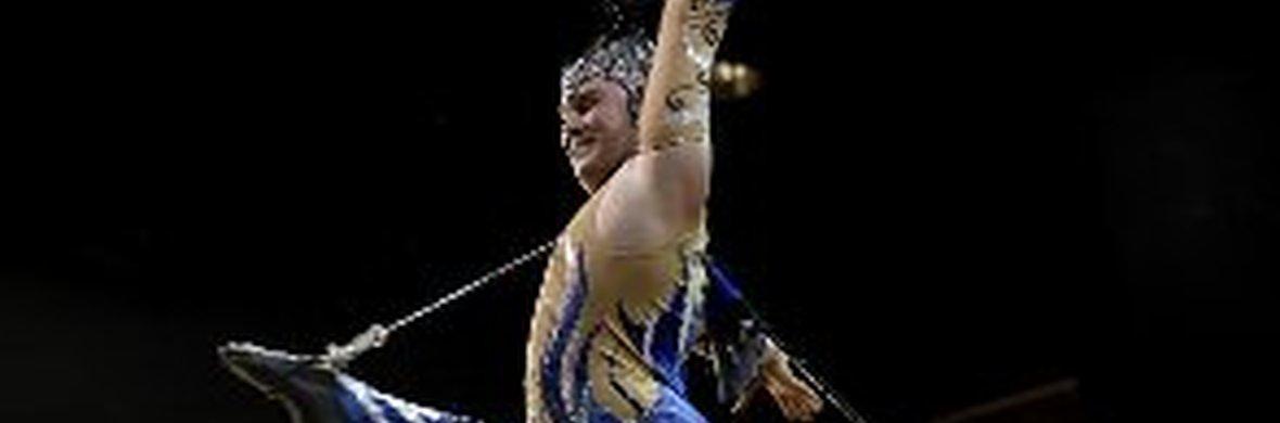 Hair Hang - Circus Acts - CircusTalk