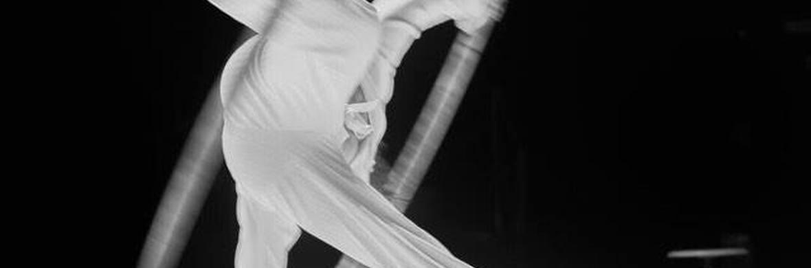 La rose des vents - Circus Shows - CircusTalk