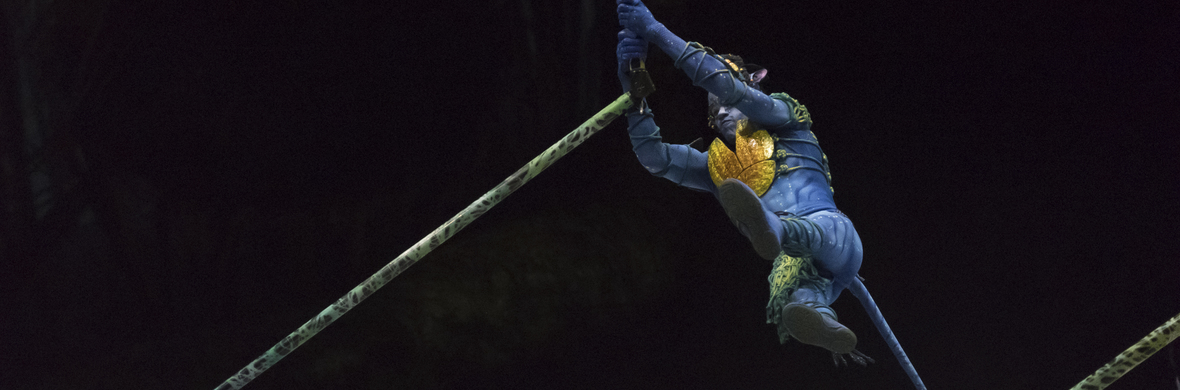 WITH CIRQUE DU SOLEIL - Circus Shows - CircusTalk