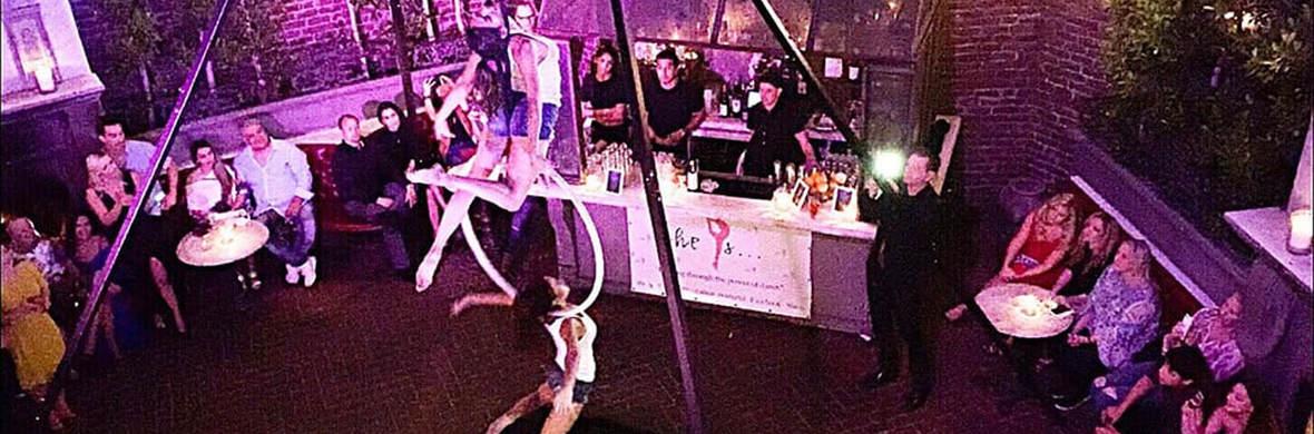 Duo Lyra-Bird Set Free - Circus Acts - CircusTalk