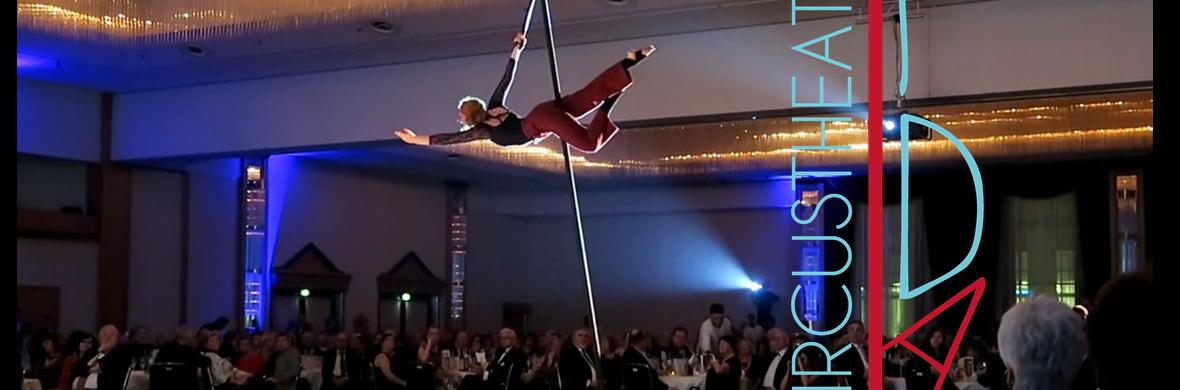 - Time - on aerial pole  by Ida Circustheatre - Circus Acts - CircusTalk