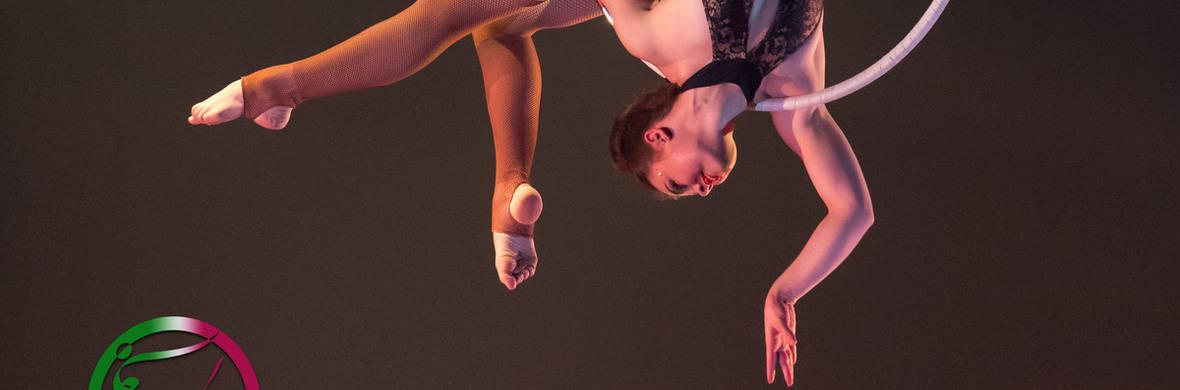 Aerial Lyra - Circus Acts - CircusTalk