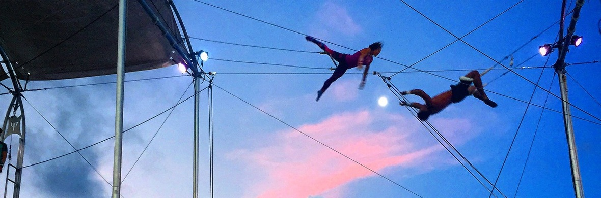 Flying Trapeze  - Circus Acts - CircusTalk