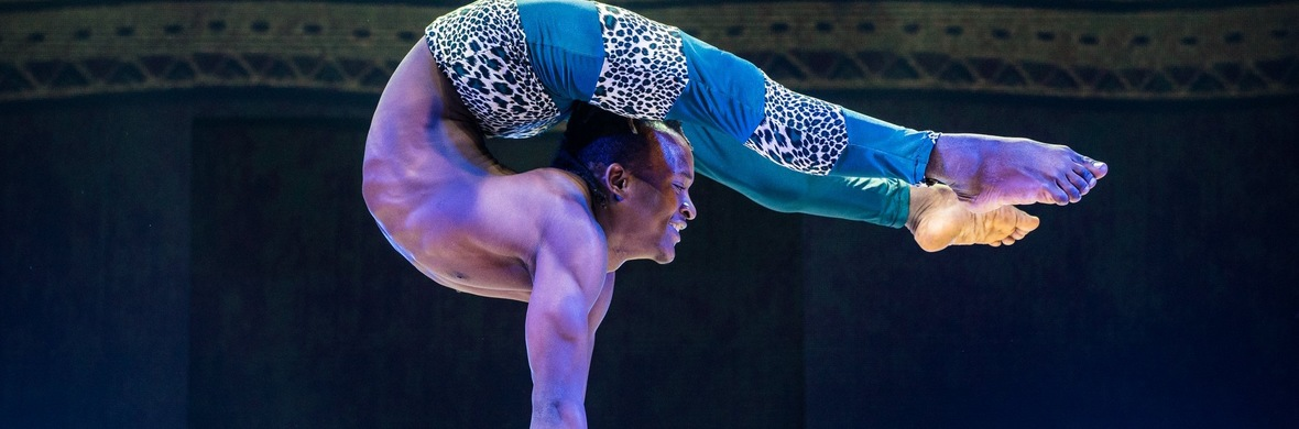 Extreme contortionist free  - Circus Acts - CircusTalk