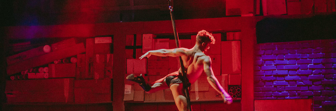 Aerial Pole - If I Could Wish For Something - Circus Acts - CircusTalk