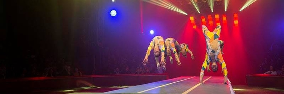Gold jumpers  - Circus Acts - CircusTalk