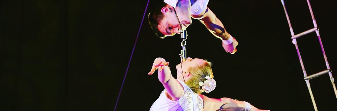 Aerial cradle  - Circus Acts - CircusTalk