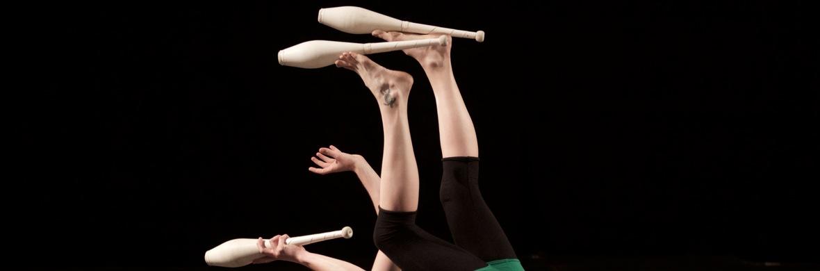 Take Wing - Circus Acts - CircusTalk