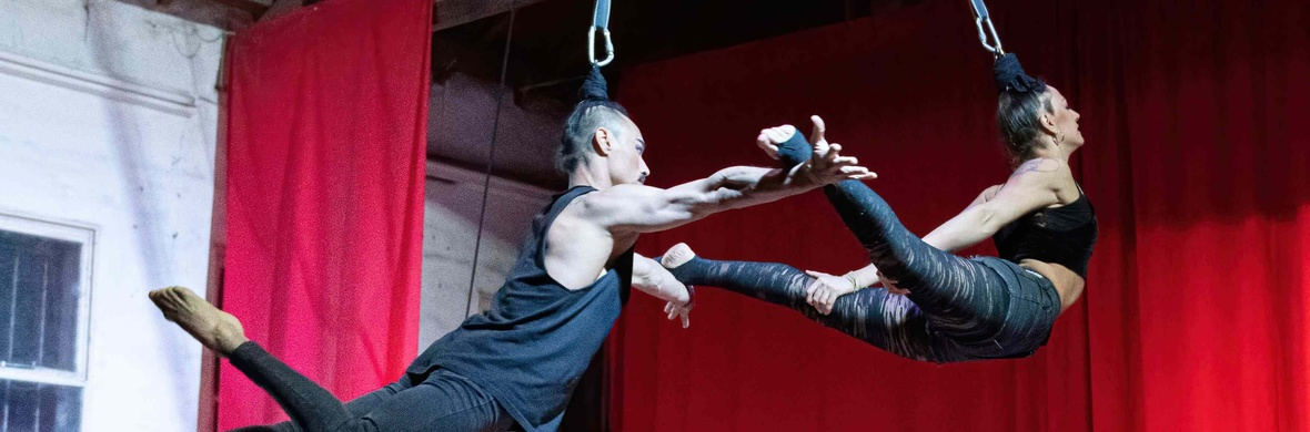 Aerial Straps and Hair hanging RESILIENCIA DÚO. - Circus Acts - CircusTalk
