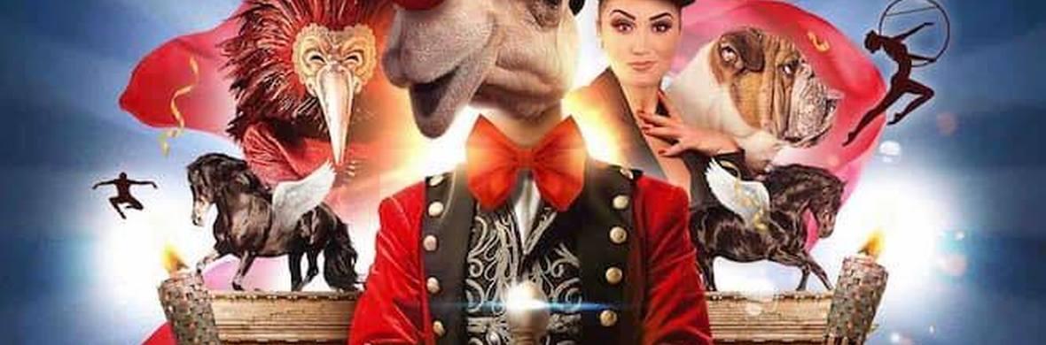 ExcentriK - Circus Shows - CircusTalk
