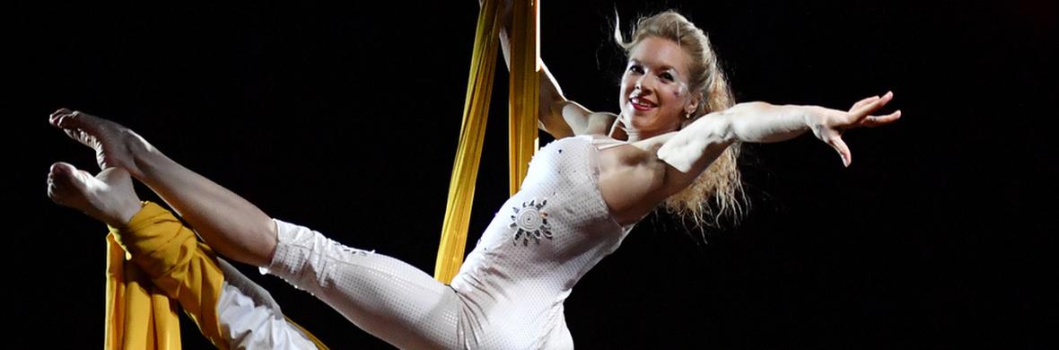 Aerial Silks Acrobatics  - Circus Acts - CircusTalk