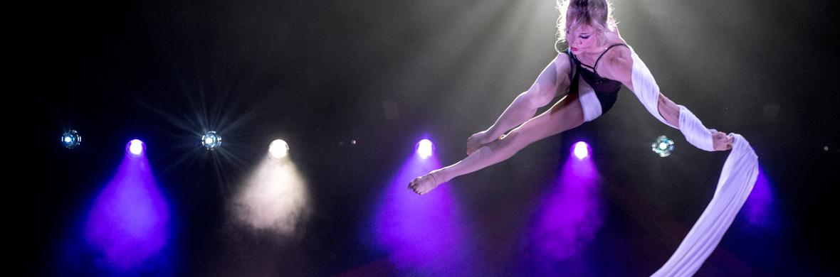 """Solo Silks Act, """"Cold"""" - Circus Acts - CircusTalk"""