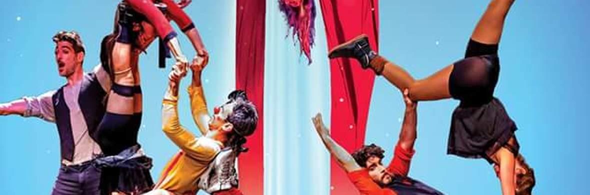 Joker - Circus Shows - CircusTalk