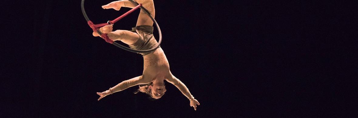 Aerial hoop solo act - Circus Acts - CircusTalk