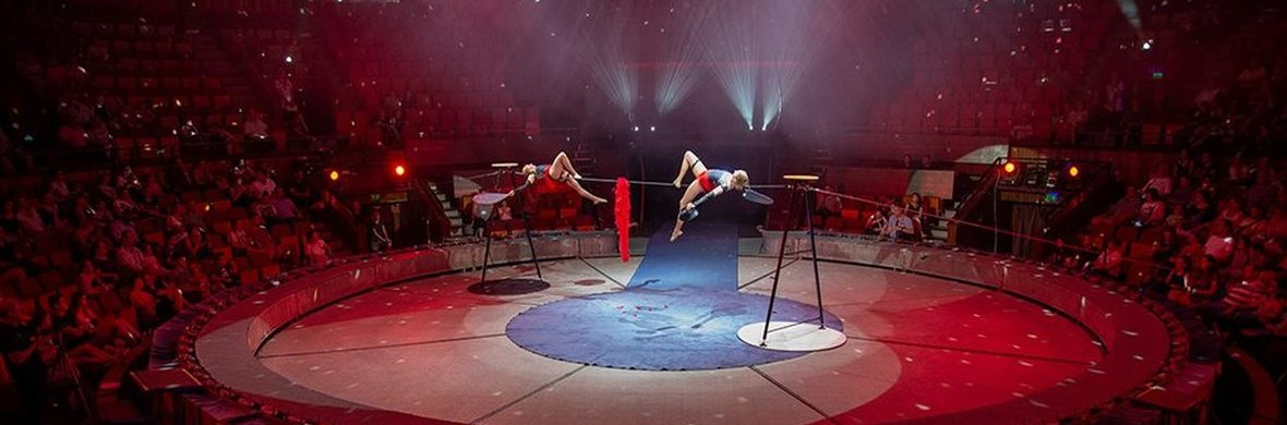 M&D - Circus Acts - CircusTalk