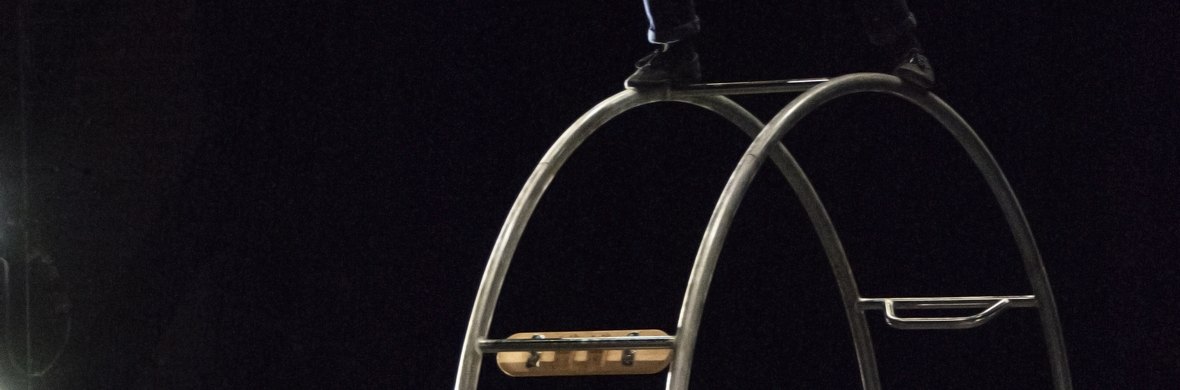 Samuelle McGowan - German wheel - Circus Acts - CircusTalk