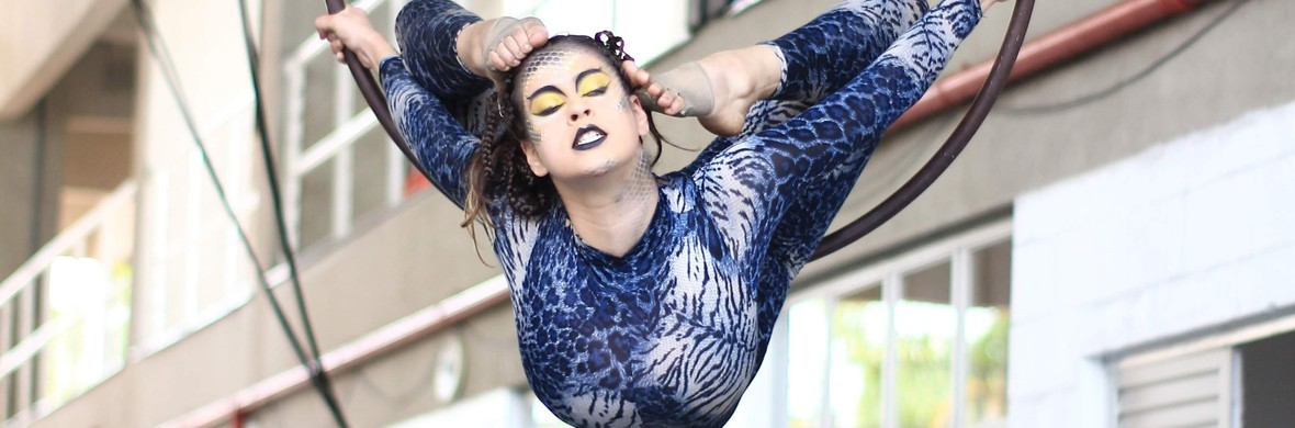 Medusa - Circus Shows - CircusTalk