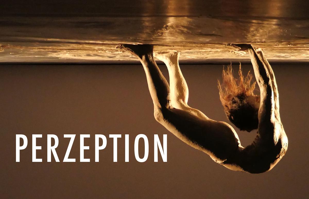 PERZEPTION