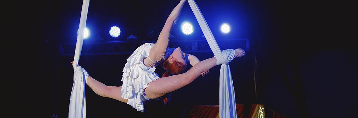 Aerial silks  - Circus Acts - CircusTalk