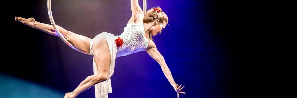 Aerial Hoop/Lyra/Ring - Circus Acts - CircusTalk