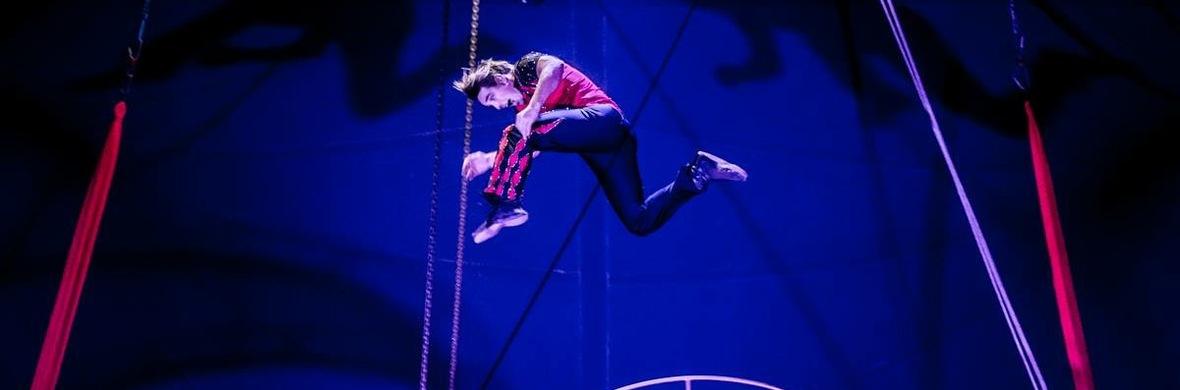 Wheel of death - Circus Acts - CircusTalk