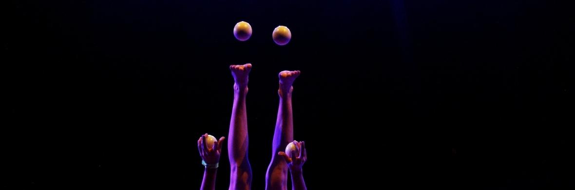 Sub-  - Circus Acts - CircusTalk