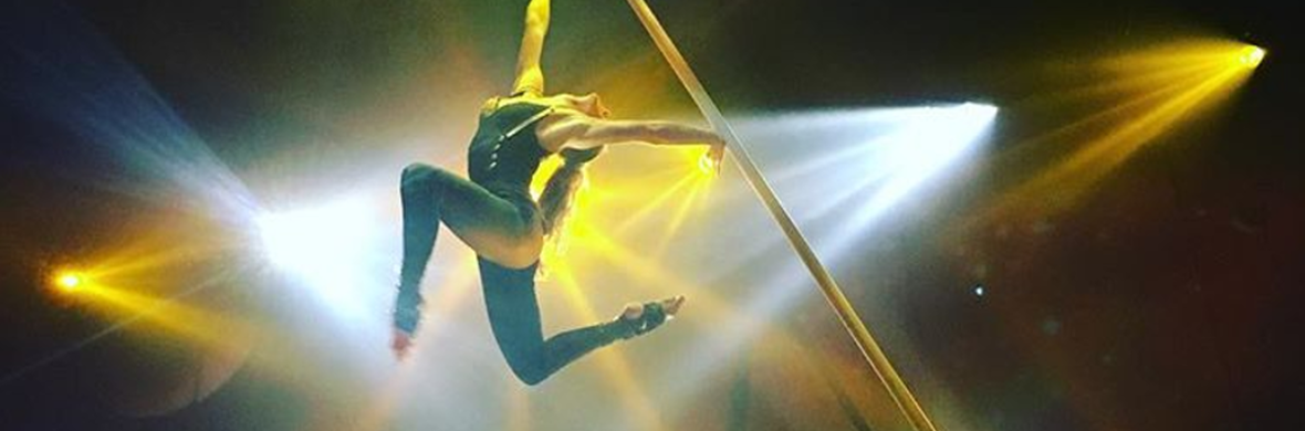 Aerial Pole - Circus Acts - CircusTalk
