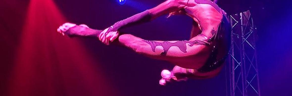 Aerial hoop - Circus Acts - CircusTalk