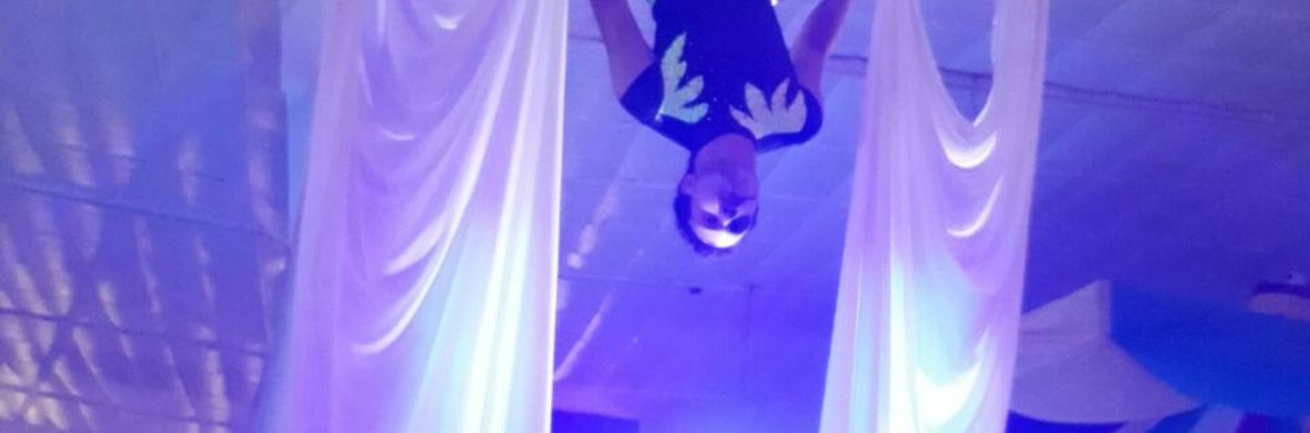 Aerial Silk Gabriel Matheus - Circus Acts - CircusTalk