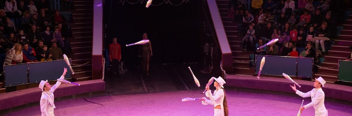 Trio Jugglers - Circus Acts - CircusTalk